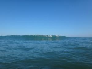 青島リーフ 波1